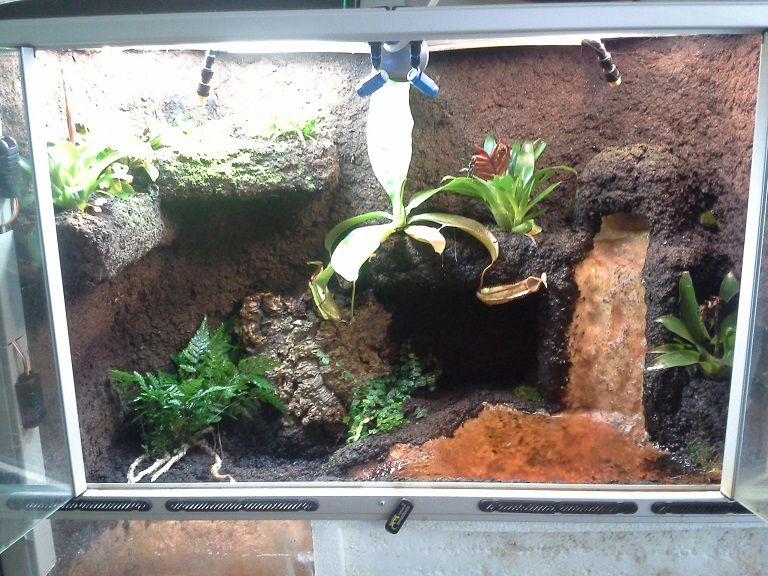 Terrarium and Linkit ONE