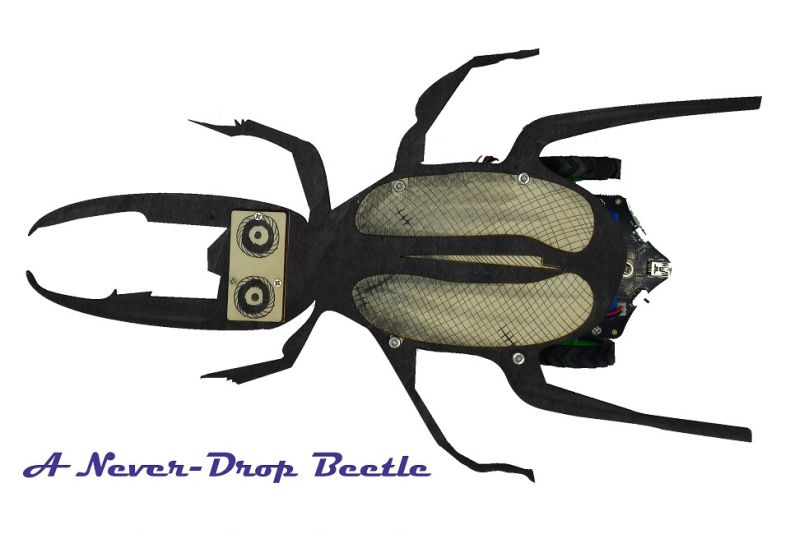 A Never Fall Beetle